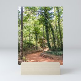 Panoramic view of the ocher lands in the natural park Mini Art Print