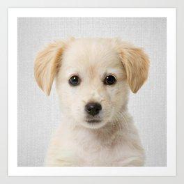 Golden Retriever Puppy - Colorful Art Print