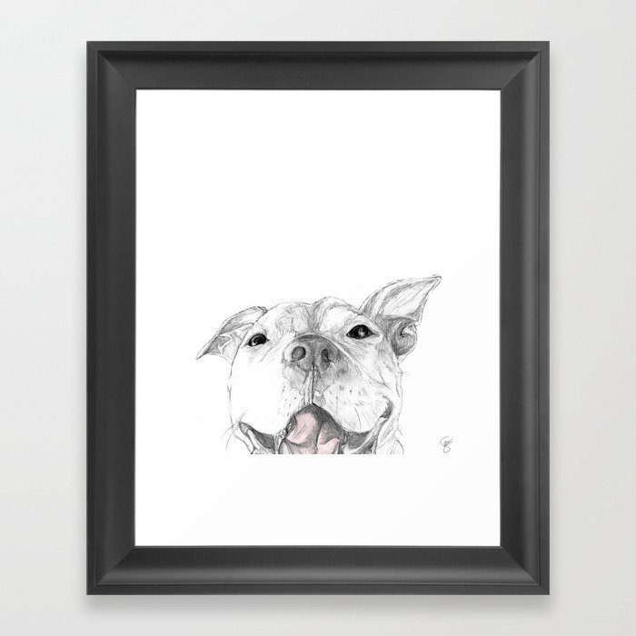 Whaddup :: A Pit Bull Smile Gerahmter Kunstdruck