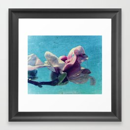 Tulip Tree Blossom #1 Framed Art Print