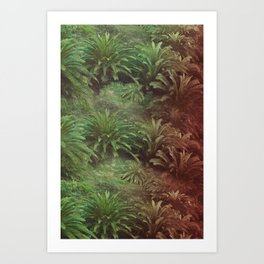 Canarian Jungle Art Print