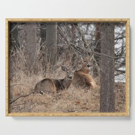 White-Tailed Deer Serving Tray