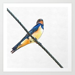 Swallow Bird On A Wire Art Print