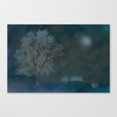 Midnight dream Canvas Print