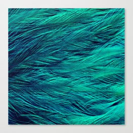 Teal Feathers Canvas Print