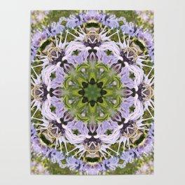 Lacy Lavender Wild Bergamot Kaleidoscope Poster
