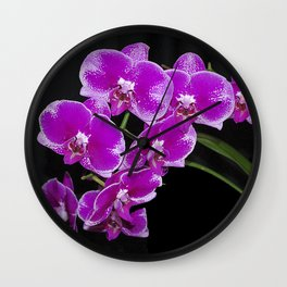 Graceful spray of deep pink orchids Wall Clock