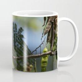 Roosting Black Capped Chickadee Coffee Mug
