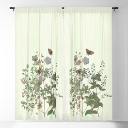 The fragility of living - botanical illustration Blackout Curtain