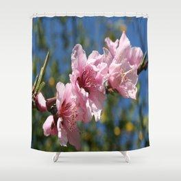 Close Up Peach Tree Blossom Against Blue Sky Shower Curtain