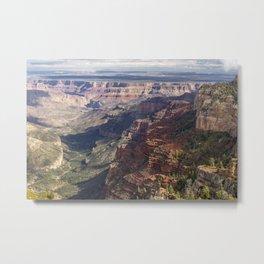 A New Canyon, A New View Metal Print