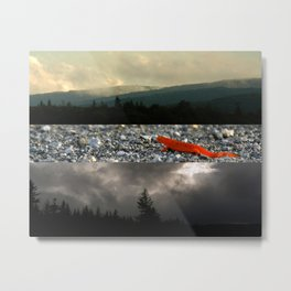 An Evening at Dolly Sods Metal Print