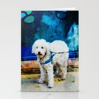 caleb troy Stationery Cards featuring The Adventures Of Troy I by Louisa Catharine Photography