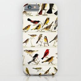 Cuckoo, Hummingbird, Flycatcher, Kingbird, Oriole, Bobolink, Sparrow, Dickcissel, Bunting, Grosbeak, Tanager, Vireo, Warbler22 iPhone Case