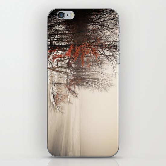 On winters frozen pond iPhone & iPod Skin