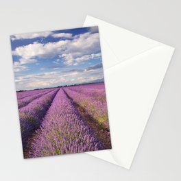 Blooming fields of lavender in the Provence, southern France Stationery Cards
