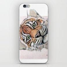 Tiger Cub 887 iPhone & iPod Skin