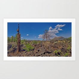 Burned out tree on the left with Sunset Crater Volcano Arizona Art Print