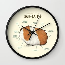 Anatomy of a Guinea Pig Wall Clock