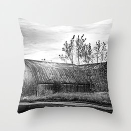 Sun Kissed Barn Throw Pillow