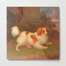 dog painting Blenheim spaniel Metal Print