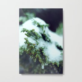 CHILLED INFUSION Metal Print