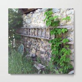 Swiss Barn and Ladder Metal Print