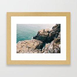 Cliffs Framed Art Print