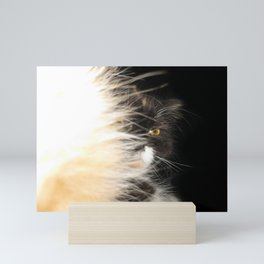 Fluffy Calico Cat Mini Art Print