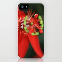 Passiflora vitifolia Scarlet Red Passion Flower iPhone Case