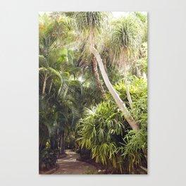 Florida Dreaming Canvas Print