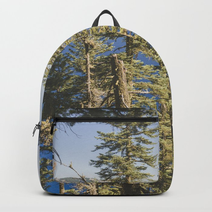 Cabin at the Lake Backpack