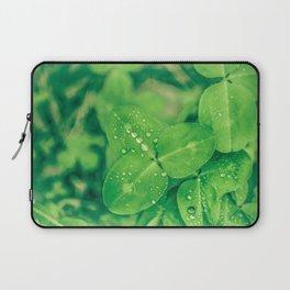 Clover leaf in the rain Laptop Sleeve