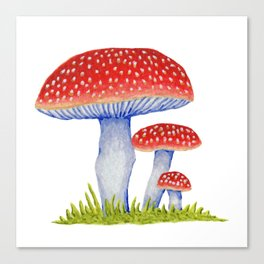 Woodland Toadstools Canvas Print