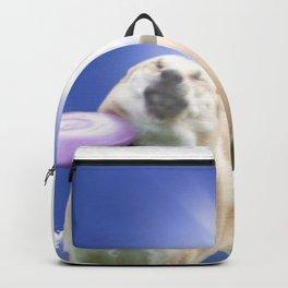 Frisbee Dog Backpack