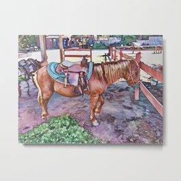 Horse at zoo Metal Print