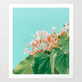 Carlie #photography #nature Art Print