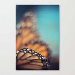 On the edge of Flying Canvas Print