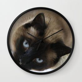 Siamese Soulful Expression Wall Clock