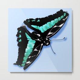 Papillon vert Metal Print
