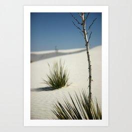 White Sands, March 2007 Art Print