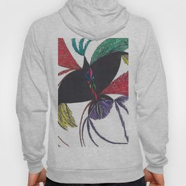 A Colorful Flight Hoody