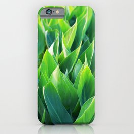 Green leaves so beautiful. iPhone Case