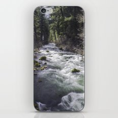 Through the Woods iPhone Skin