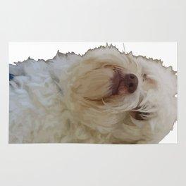 Grumpy Terrier Dog Face Rug