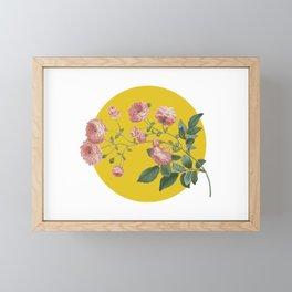 Sunny Roses Framed Mini Art Print