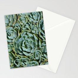 Echeveria Stationery Cards