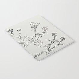 Chrysanthemums Notebook