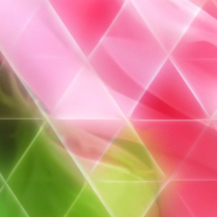 Pink Roses in Anzures 3 Art Triangles 2 Leggings