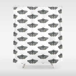 Kintsugi - A Graphite Drawing of a Moth by Brooke Figer Shower Curtain